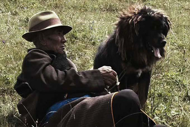 Tibet-Film-Old-Dog-2014