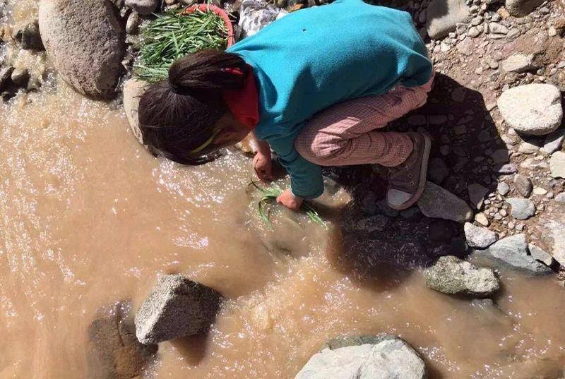 Tibet-water-village-2015
